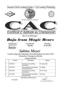Baju_from_Magic_Bears_08-12-15